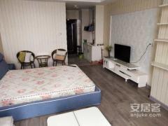 出租(主城区)金田·湖畔春天1室1厅1卫55平精装修