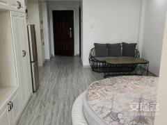 出租(主城区)宝龙龙公馆1室1厅1卫44平中档装修